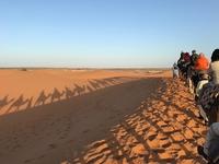 2月度旅行見聞記「モロッコ周遊」